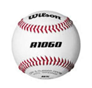 Picture of Wilson A1060 Practice Ball